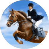 EQUESTRIAN<BR>PERFORMANCE